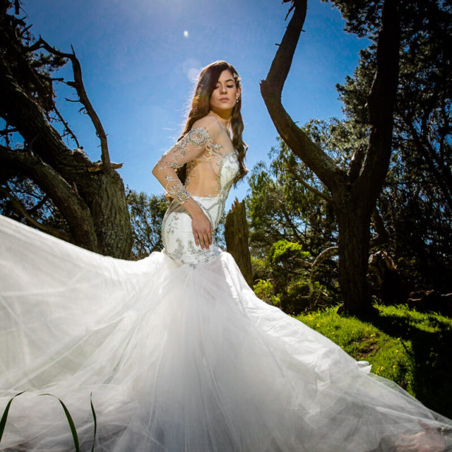 bridal portrait in wedding dress in San Francisco
