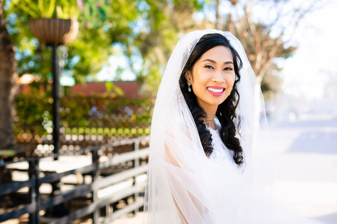 bridal portrait with veil flowing